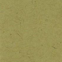 Papir - Bazzill Classic - 12x12 - Kraft