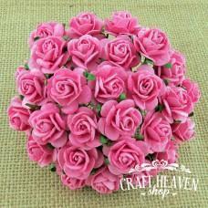 Živo roza vrtnice - 20mm