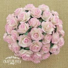 Roza in bež dvobarvne vrtnice - 20mm