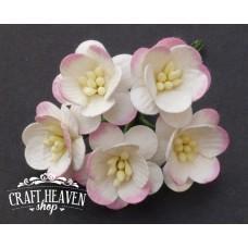 Dvobarvni roza češnjevi cvetovi - 25mm