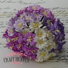 Vijola, lila in bele marjetice - mix - 25mm