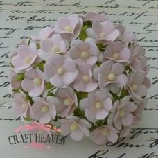 Dvobarvni cvetovi - baby roza/beli - 15mm