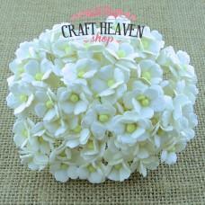 Beli cvetovi - 15mm