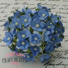 Dvobarvni cvetovi - modri/beli - 15mm