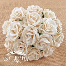 Umazano bele Chelsea vrtnice - 35mm