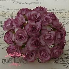 Antično temno roza divje vrtnice - 30mm