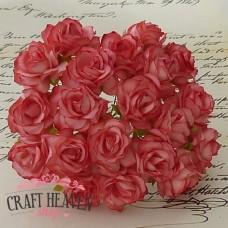 Dvobarvne jagodno rdeče divje vrtnice - 30mm
