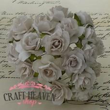 Bele divje vrtnice - 30mm