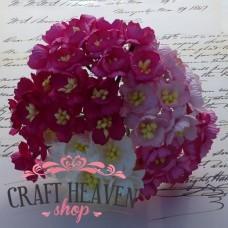 Mix roza in beli češnjevi cvetovi - 25mm