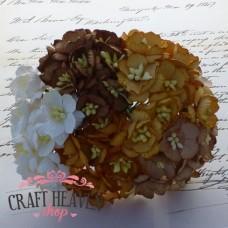 Mix rjavi in beli češnjevi cvetovi - 25mm