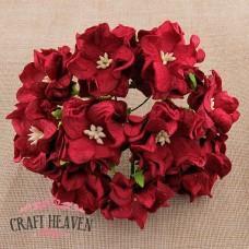 Temno rdeče gardenije - 35mm