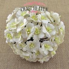 Beli cvetovi jablane - 25mm
