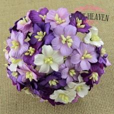 Vijola in beli cvetovi jablane - mix - 25mm