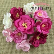 Mix roza in belih magnolij - 35mm