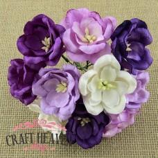 Mix vijola in belih magnolij - 35mm