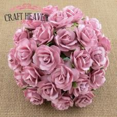 Temno roza divje vrtnice - 30mm