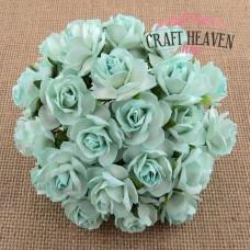 Modro-zelene divje vrtnice - 30mm