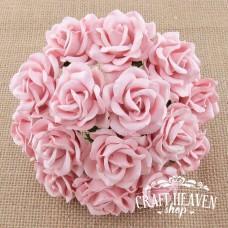 Bledo roza Chelsea vrtnice - 35mm
