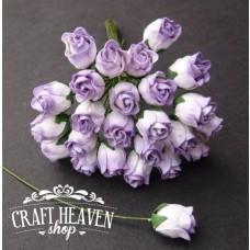 Dvobarvne lila zaprte vrtnice - 10mm