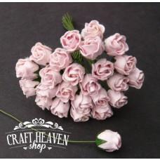 Bledo roza zaprte vrtnice - 10mm