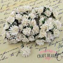 White Mulberry Paper Aster Daisy Stem Flowers - 15mm
