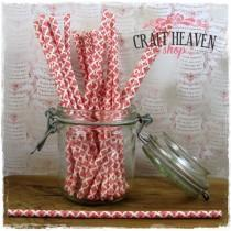 Damask Paper Straws - Red