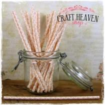 Damask Paper Straws - Peach