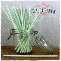 Damask Paper Straws - Light Green