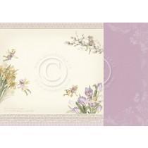 Paper - Spring fairies - Four Seasons of Fairies