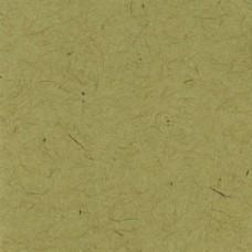 Paper - Bazzill Classic - 12x12 - Kraft