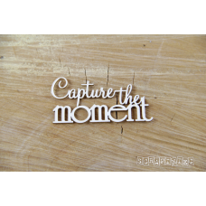 Capture The Moment - Scrapiniec
