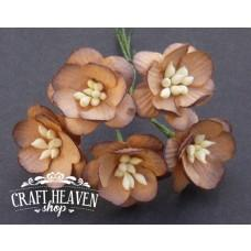 2-Tone Chocolate Brown Mulberry Paper Cherry Blossoms - 25mm
