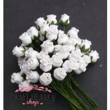 White Hip Rosebuds - 10mm
