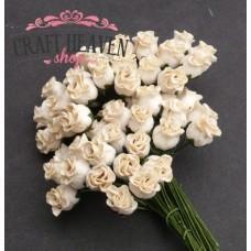 Deep Ivory Hip Rosebuds - 10mm