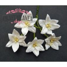 White Mulberry Paper Lily Flowers - 30mm