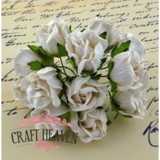 Large White Wild Rosebuds - 20mm