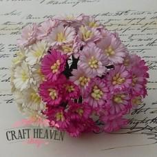 Mixed Pink/White Cosmos Daisy Stem Flowers - 25mm