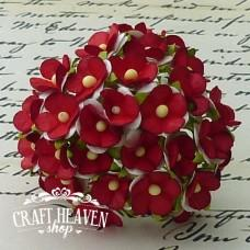 2-Tone Red/White Sweetheart Blossoms - 15mm