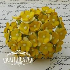 2-Tone Yellow Sweetheart Blossoms - 15mm
