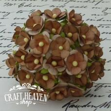 2-Tone Brown Sweetheart Blossoms - 15mm