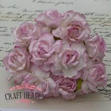Large 2-Tone Baby Pink Wild Roses - 40mm