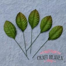 Green Mulberry Paper Leaves - 35mm