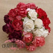 Mixed Red & White Mulberry Paper Wild Roses - 30mm