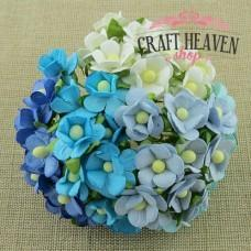 Mixed Blue & White Sweetheart Blossoms - 15mm