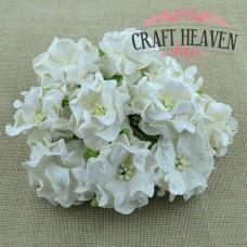 White gardenia Flowers - 60mm