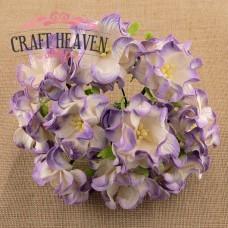 2-Tone Lilac Gardenia Flowers - 35mm