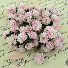 2-Tone Baby Pink/Ivory Mulberry Paper Aster Daisy Stem Flowers - 15mm