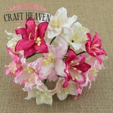 Mixed Pink and White Mulberry Paper Lily Flowers - 30mm