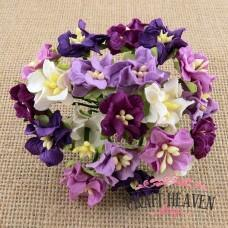 Mixed Purple Miniature Gardenia Flowers - 25mm