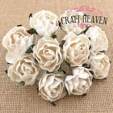 White English Mulberry Paper Roses - 30mm